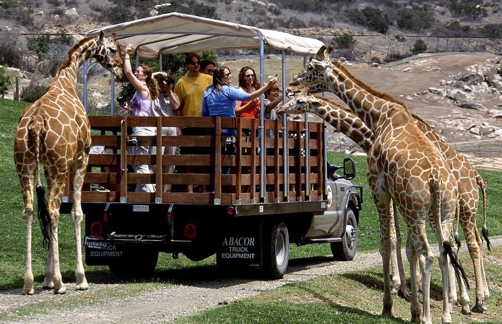 Zoológico de San Diego na Califórnia