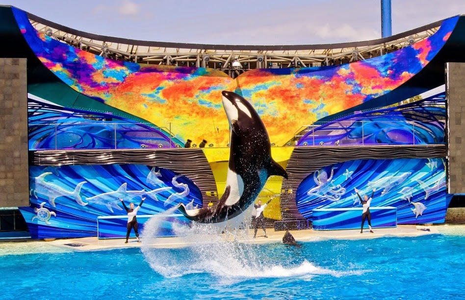 Parque SeaWorld San Diego California