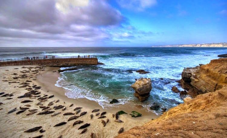 Praia La Jolla em San Diego