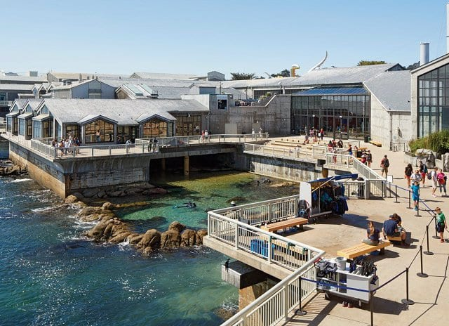 Cinco razões para visitar Monterey na Califórnia