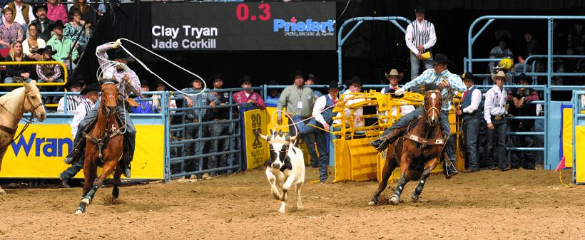 National Finals Rodeo em Las Vegas