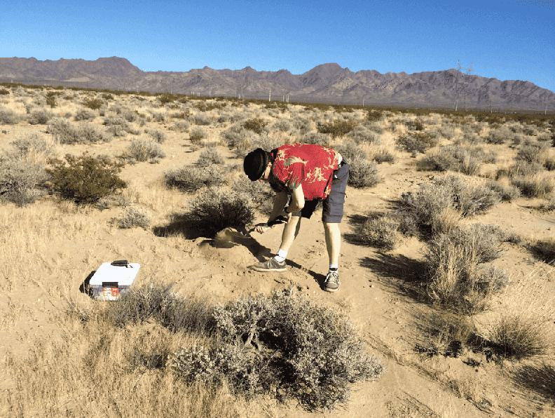 Roupas adequadas para o deserto em Las Vegas