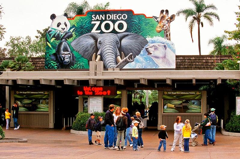Conhecendo San Diego saindo de Las Vegas: San Diego Zoo
